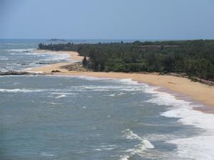 ساحلی خبریں