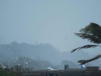 Cyclone toll climbs to 33, relief work on war footing says CM