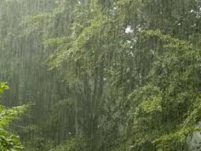 کاروار: ہوائی ماحول میں غیر ضروری اشیاء زیادہ ہونے سے بارش کی قلت :2روز سے برستی بارش سے امیدیں اور امکانات