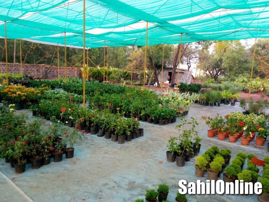 Eco Friendly Garden Inaugurates In Bhatkal Sahilonline