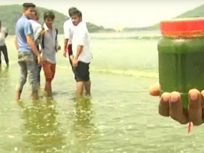 Fishermen worried as sea turns green near Karwar