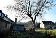 جرمنی میں انوکھی نیلامی، پورا گاؤں ایک لاکھ 65 ہزار ڈالر میں فروخت