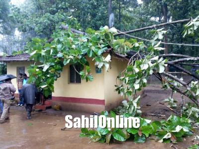 چکمگلورو میں بھاری بارش، درخت گرنے سے ایک خاتون ہلاک، دیہی علاقوں میں بجلی کی فراہمی متاثر، اسکولوں اورکالجوں میں چھٹی