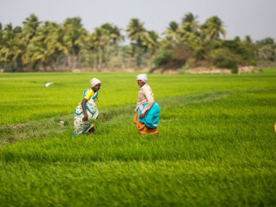 Loan waiver will give farmers' relief: Karnataka Minister T.B. Jayachandra