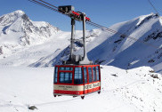 7 dead as tree falls on cable car in J&K's Gulmarg