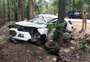 Car hits roadside tree in Yellapur; engineer dies