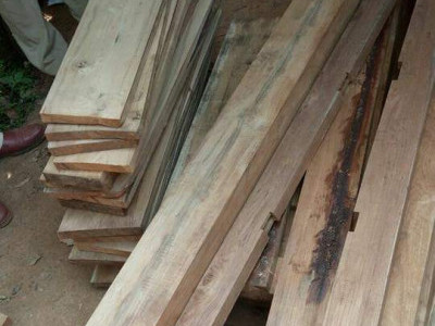 Illegal wood worth of ₹60,000 seized in Yellapur