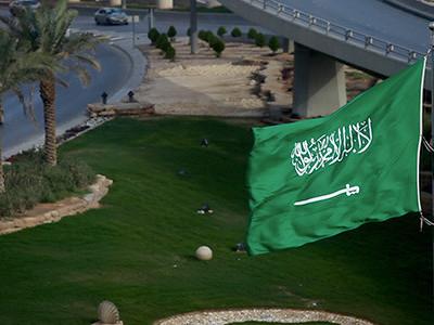 Saudi Arabia arrests princes, ministers in sweeping purge