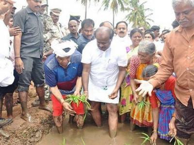 Karnataka CM plants saplings in Mandya district