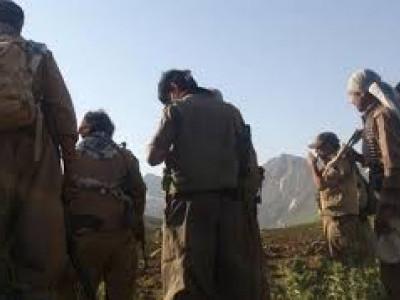 عراق سرحد کے نزدیک 10جنگجو ہلاک :ایرانی پاسداران انقلاب