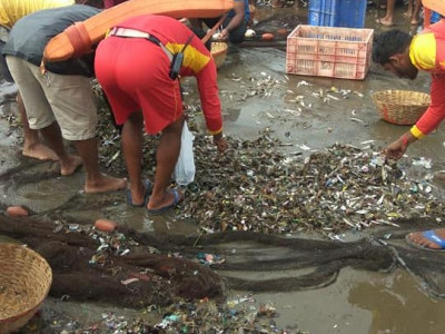 گوا کے افسران نے10لاکھ روپے مالیت کی مچھلیاں برباد کردیں۔کاروار کے مچھلی فروش کا الزام
