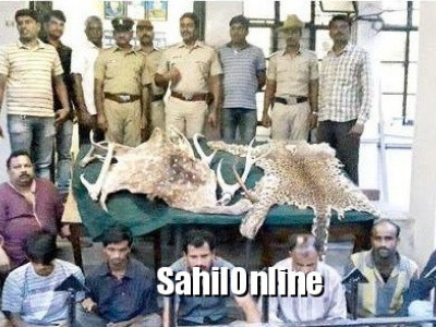 Sirsi: 8 arrested on Attempt to sell wildlife skin