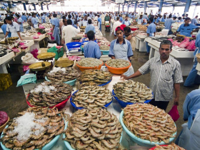 Fish markets to get cold storage units: Minister Venkata Rao