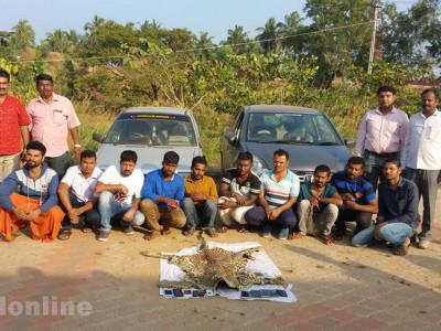 چیتے کی کھال فروخت کرنے کے دوران کنداپور میں بھٹکل کے پانچ افراد سمیت دس گرفتار