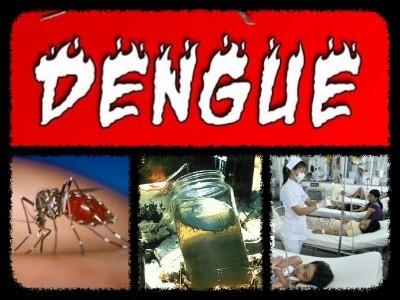 منگلورو میں ڈینگی بخار کے 40مشتبہ مریض اسپتال میں داخل۔ریاستی سطح پر% 70ملیریا کے معاملات منگلورو میں درج ہوئے