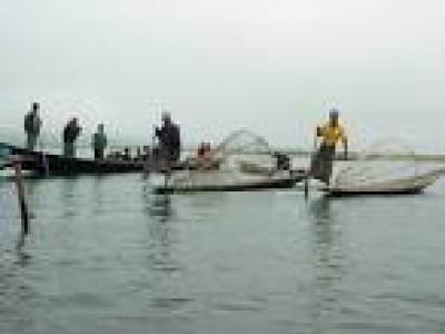 کاروار: سمندر میں غذاکی کمی سے مچھلیوں کی افزائش اورماہی گیری کا کاروبار ہورہا ہے متاثر۔ ۔۔۔۔۔ایک تجزیاتی رپورٹ