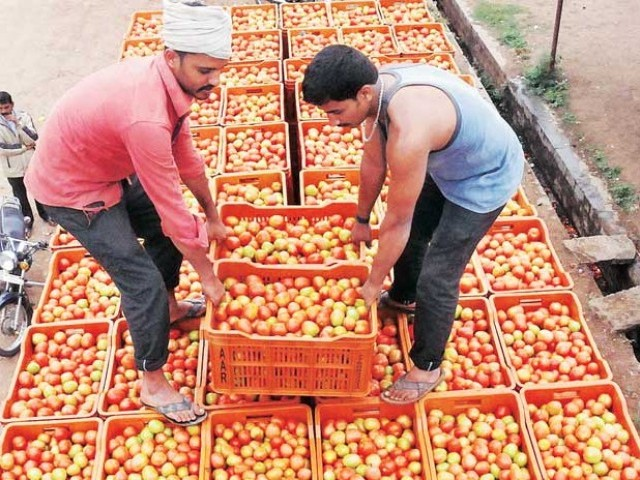 Special Insurance Plan For Tomato Farmers In Telugu States and across india