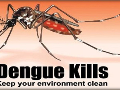 3 dead, 404 dengue and malaria cases detected in Dakshina Kannada