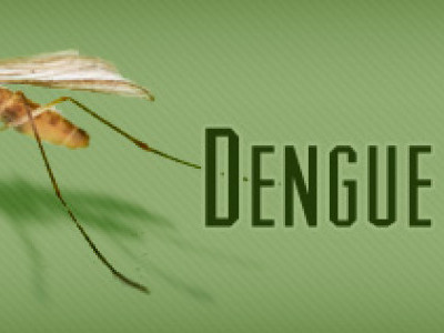 Dengue alert across DK dist; 352 people test positive