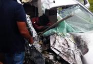 Bus, car collide head-on in Goa; no casualties