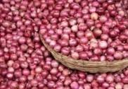 کاروار سنڈے مارکیٹ میں پیاز کی قیمتوں سے گاہکوں کے آنسوجاری : فی کلو گرام 200روپئے