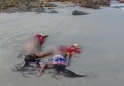 بھٹکل کے قریب منکی سمندر سے نامعلوم خاتون اور اس کی دو لڑکیوں کی نعشیں برآمد؛ خودکشی کا شبہ
