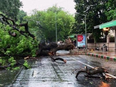 بنگلورو میں ژالہ باری کے ساتھ بار ش ہواؤں نے بیشمار درخت اکھاڑ دئے، گاڑیوں کو نقصان