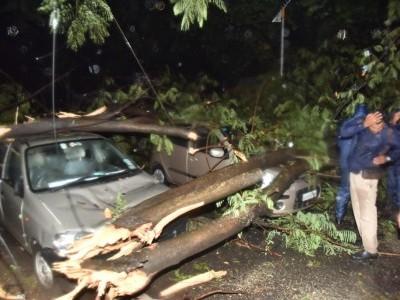 بنگلورو میں موسلادھار بارش سے ٹرافک جام موٹر گاڑیوں پر 25سے زائد درخت گرنے سے شدید نقصان