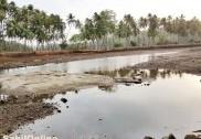 ಭಟ್ಕಳ: ಮಳೆಗಾಲಕ್ಕೂ ಮುನ್ನ ಚರಂಡಿ ಸ್ವಚ್ಛತೆಗೆ ಸಾಜೀದ್ ಆದೇಶ
