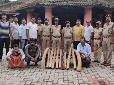 Mangaluru: Five pairs of ivory seized; 3 arrested