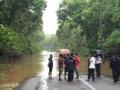 ساحلی کرناٹکا میں موسلادھار بارش؛ انکولہ ۔یلاپور ہائی وے پانی میں ڈوب گیا؛ چلتی کار پرردرخت گرنے سے کاروار کا ایک شخص ہلاک؛ ہوناور کے ولکی میں پانی کمپاونڈوں میں گھس گیا