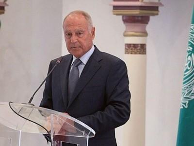 لبنان کی مشکل اور پیچیدہ صورت حال میں مدد کے لیے حاضر ہیں: احمد ابو الغیط