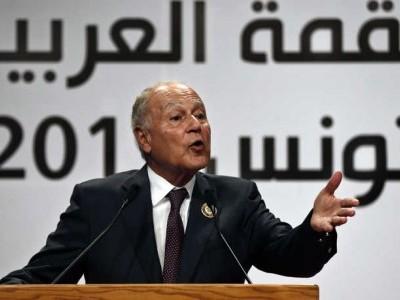 لیبیا میں ترکی کی مداخلت علاقائی تنازعات بھڑکانے کا باعث بن سکتی ہے: ابو الغیط