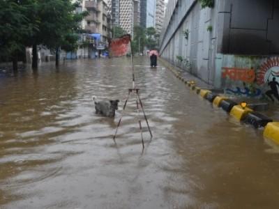 ممبئی میں موسلا دھار بارش، 38 مقامات پر پانی بھرگیا، ٹریفک جام سے عوام کو پریشانی