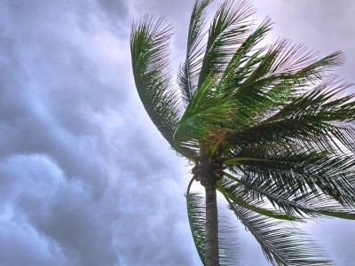 Cyclone Tauktae has intensified, moving towards Guj: IMD