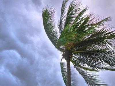 Cyclone Tauktae has intensified, moving towards Guj: IMD