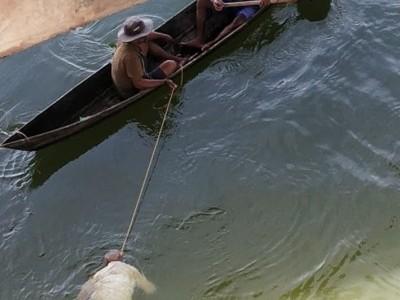 ಭಟ್ಕಳ: ಎರಡು ದಿನದ ಹಿಂದೆ ನಾಪತ್ತೆಯಾದ ವ್ಯಕ್ತಿ ಇಂದು ನದಿಯಲ್ಲಿ ಶವವಾಗಿ ಪತ್ತೆ