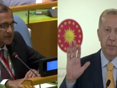 ترکی دوسرے ممالک کی خودمختاری کا احترام کرنا سیکھے: ہندوستان