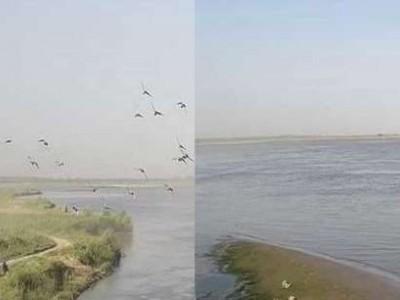 یو پی: گنگا میں پانی چھوڑے جانے سے قریبی علاقوں میں خوف، الرٹ جاری