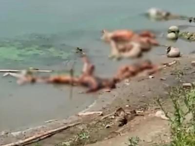 ಗಂಗಾ ನದಿಯಲಿ ಇನ್ನಷ್ಟು ಶವಗಳು ಪತ್ತೆ, ಕೊರೋನ ಸಹಿತ ಇನ್ನಿತರ ಸಾಂಕ್ರಾಮಿಕ ಸೋಂಕು ಹರಡುವ ಭೀತಿ