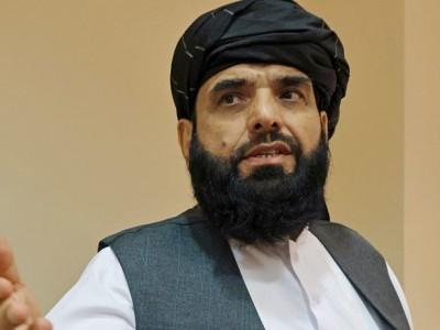سہیل شاہین اقوام متحدہ میں افغانستان کی طالبان حکومت کے سفیر نامزد